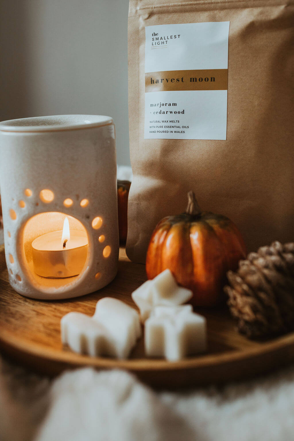Autumn Natural Wax Melts from The Smallest Light